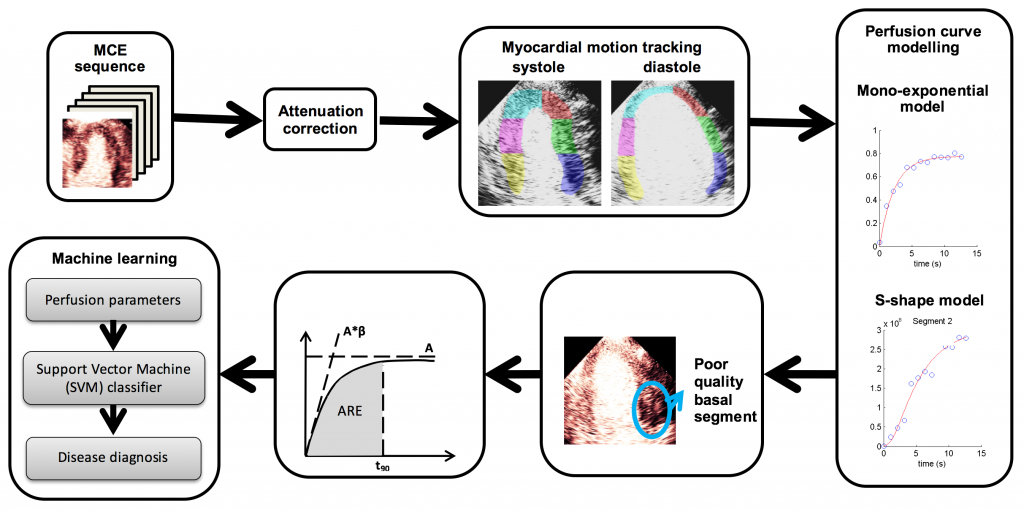 Figure 2: The computer-assisted tools and quantification methods we developed to analyse MCE data